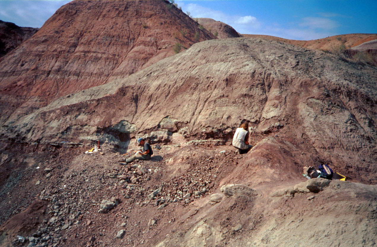 Excavation in the Junggar Basin in northwest China in 2001: Liuhuanggou, the site of the dinosaur carcass find.