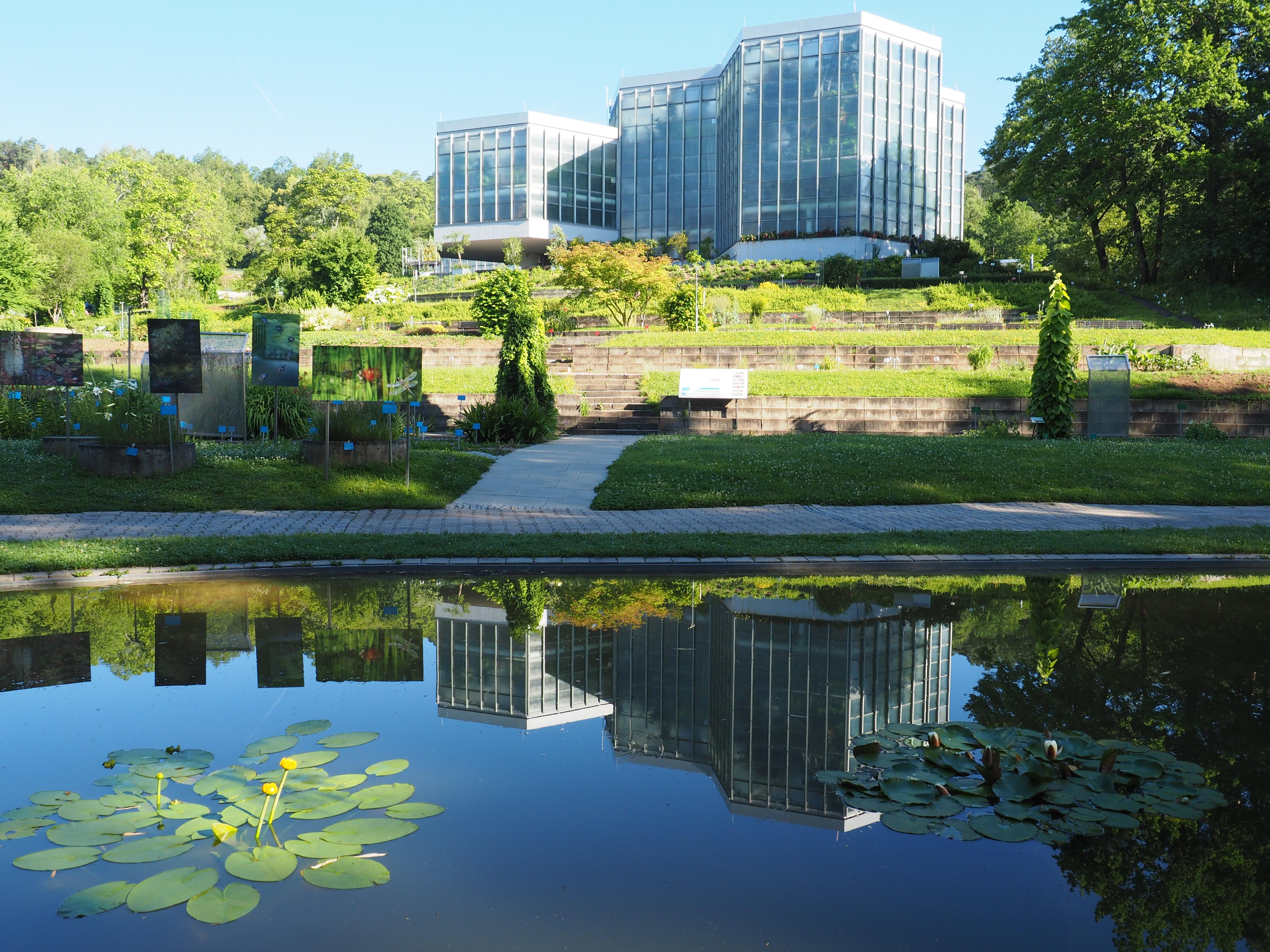 Willkommen Im Botanischen Garten Universitat Tubingen
