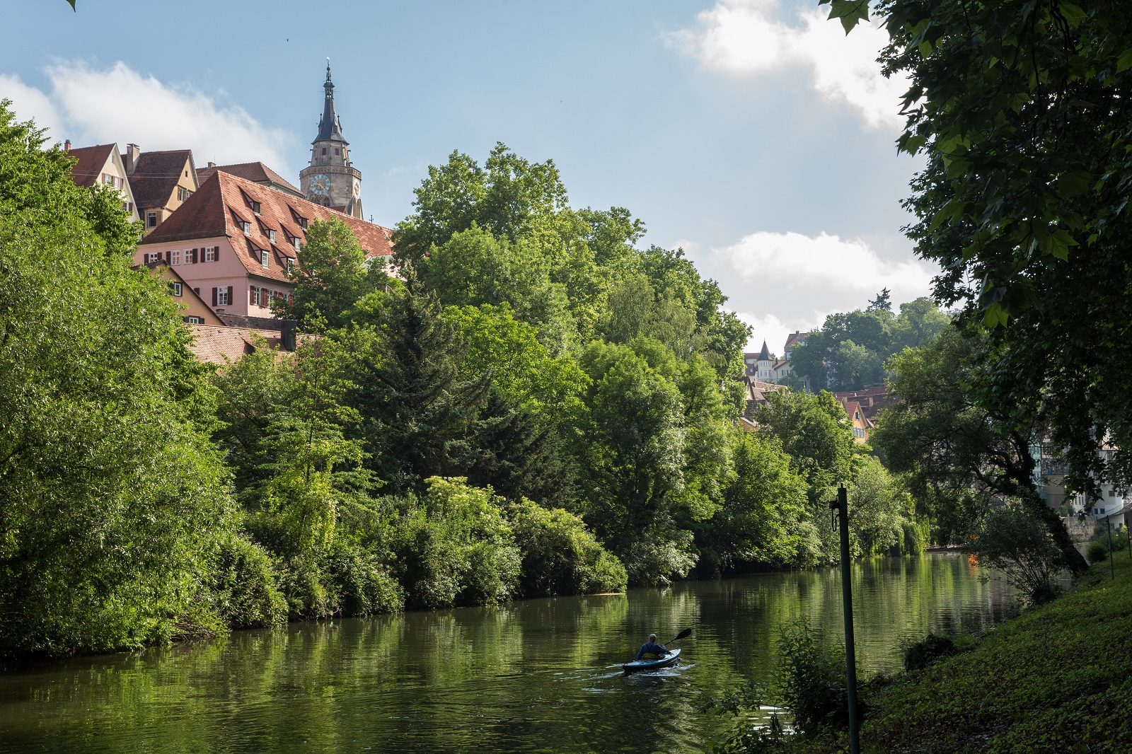 In the foreground the Neckar, the bank with trees, and in the background the old town and the Stiftskirche church