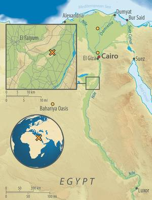 Map of Egypt, showing the archaeological site of Abusir-el Meleq (orange X), and the location of the modern Egyptian samples used in the study (orange circles). Graphic: Annette Guenzel.